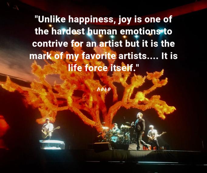 Bono Joy(1)-2